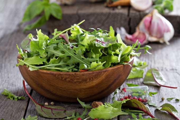 Home Grown Mixed Salad