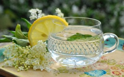 Foraged Elderflower Cordial