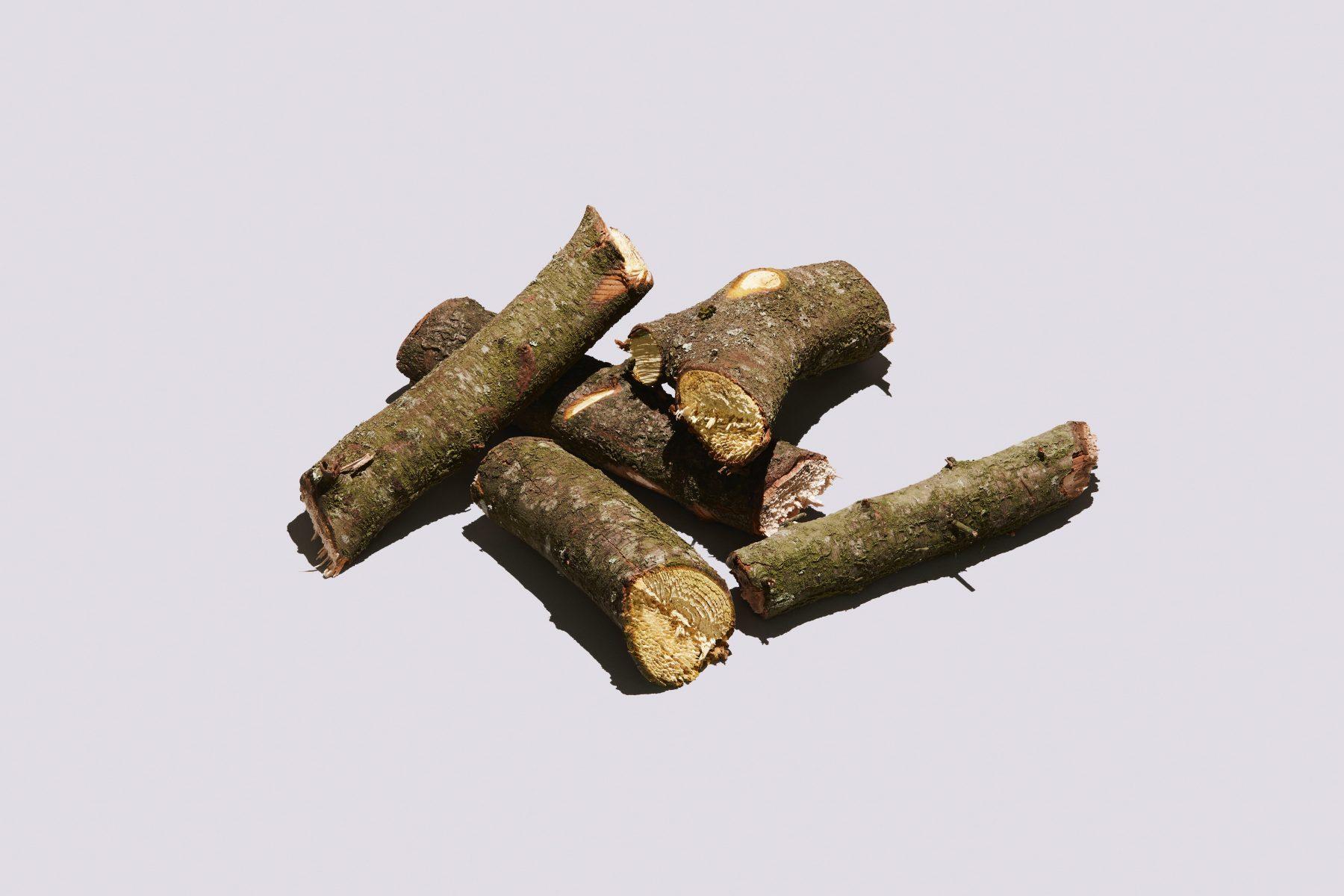 Blackthorn Chunks